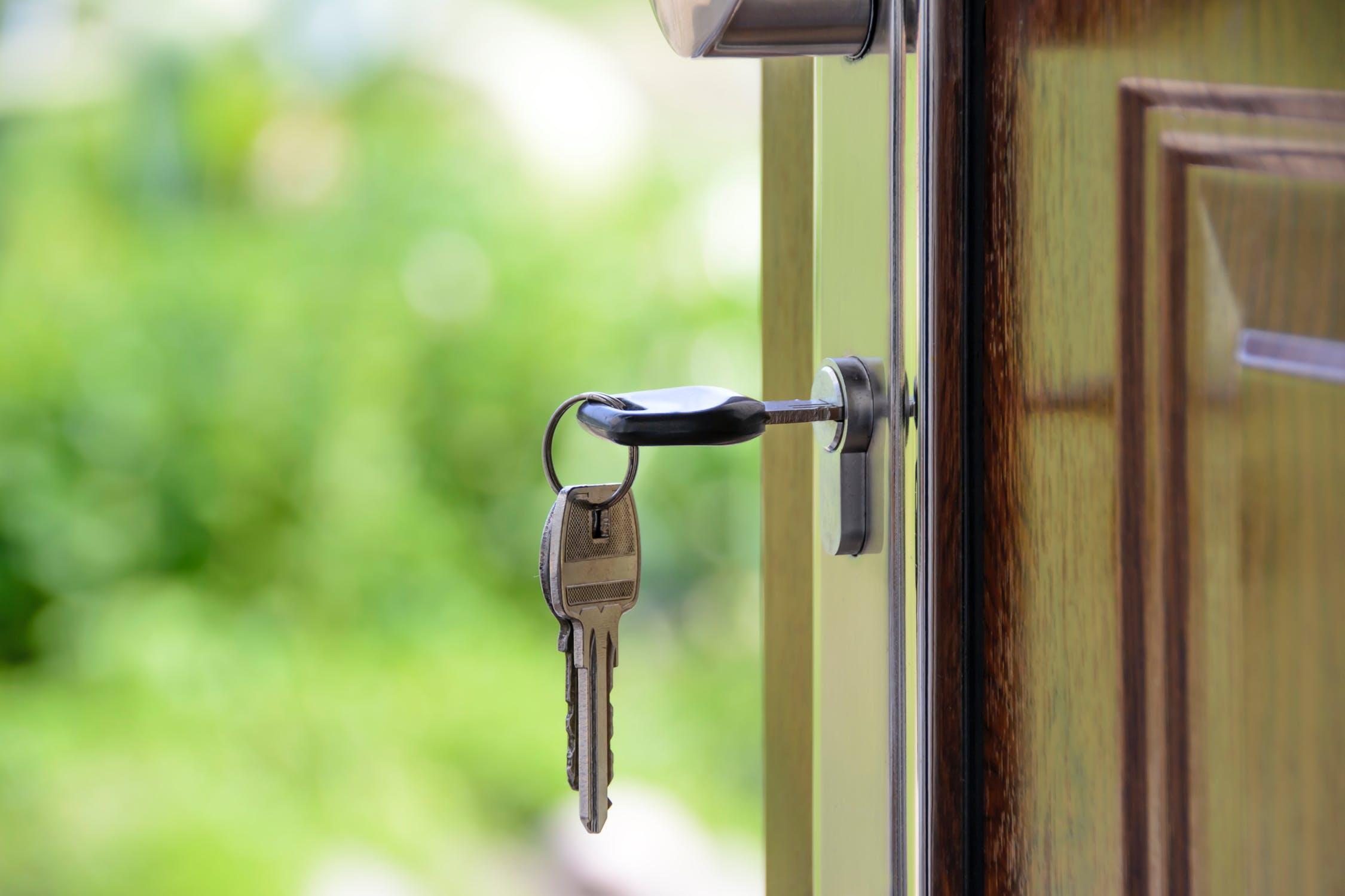 klucz w drzwiach na tle zieleni